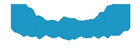 B&I Data Systems Logo